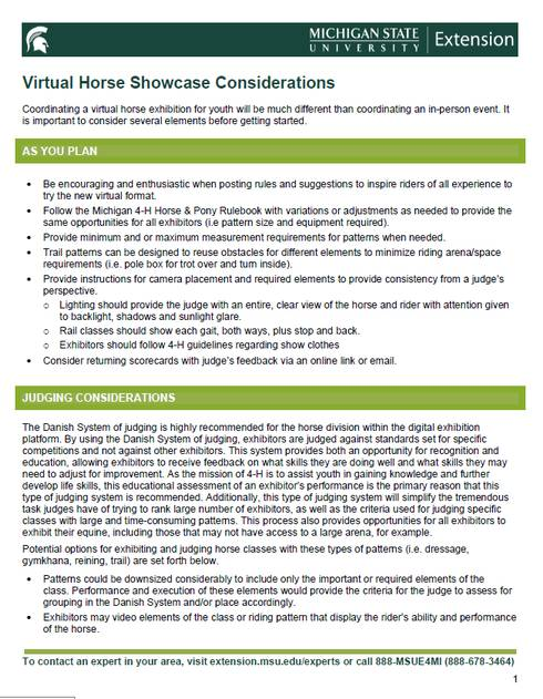 The front page of the Virtual Horse Showcase Considerations document.