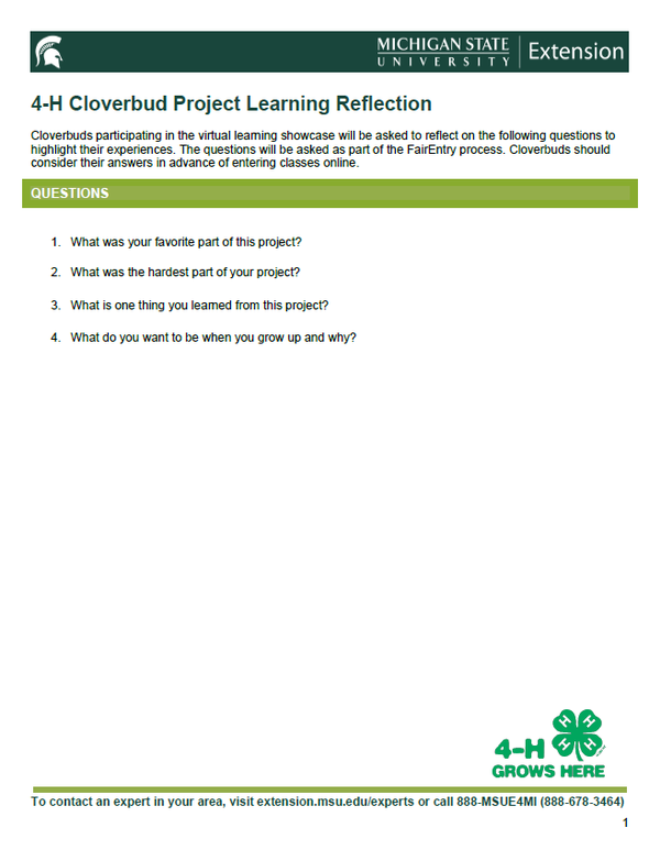 Thumbnail of 4-H Cloverbud Project Learning Reflection document.