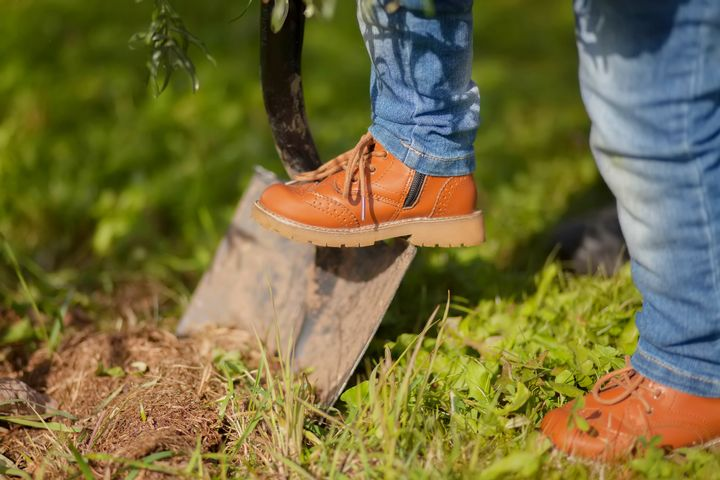 Heavy gardening activities can strengthen your body.
