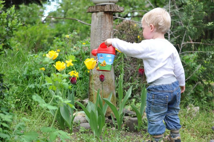 Young children can practice locomotor skills, body management skills and object control skills in the garden.