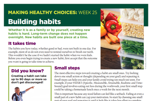 Making Healthy Choices: Week 25