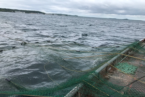 Farm stress teletherapy resources expanded to include Michigan's aquaculture and commercial fishers