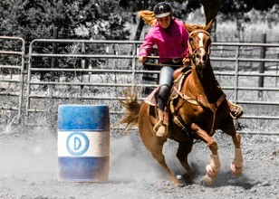 a75424d2a5a9f Have you ever noticed that when you move your body there is a mirrored  reaction from your horse? Say you drop your shoulder into a turn, your horse  will ...
