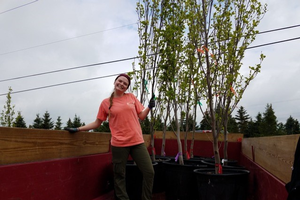 Master's student, Riley Rouse, standing in front of her research trees.