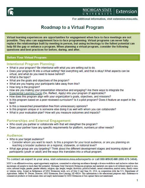 Thumbnail of Roadmap to a Virtual Program document.