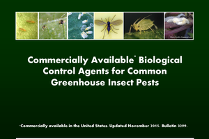 Commercially Available Biological Control Agents for Common Greenhouse Insect Pests
