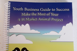 Youth Business Guide to Success – Make the Most of Your 4-H Market Animal Project Curriculum