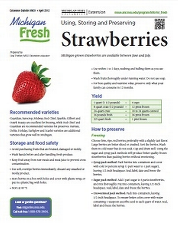 Michigan Fresh: Using, Storing, and Preserving Strawberries