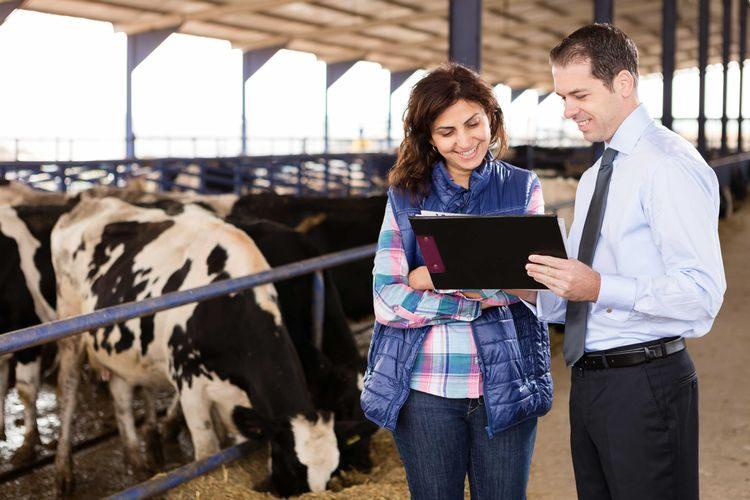 A man and woman standing in a barn and looking at paperwork