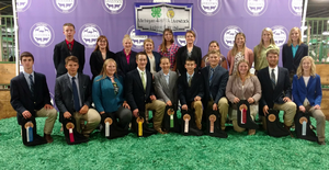 2017 Michigan 4-H/FFA Livestock Judging Contest improves skills for youth participants