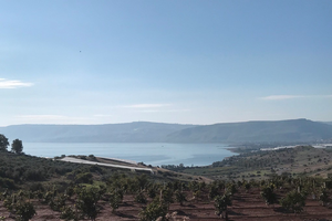 Sea of Galilee with a new grove of fruit trees in the foreground, and shade cloth covered bananas nearer the Sea.