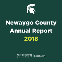 county annual report graphic