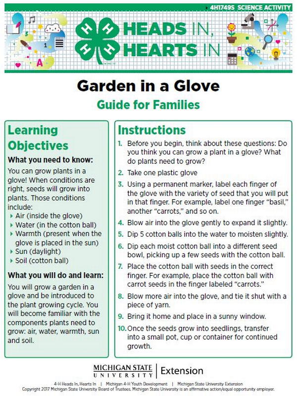Garden in a Glove cover page.