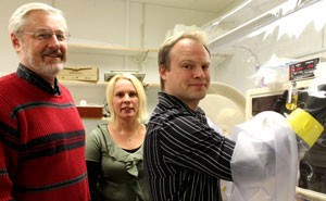 (From left) Kris Berglund, Ulrika Rova and Magnus Sjöblom won a grant to scale up production of butyric acid. Photo: Leif Nyberg