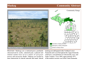 Now is the time to get familiar with resources available from Michigan Natural Features Inventory