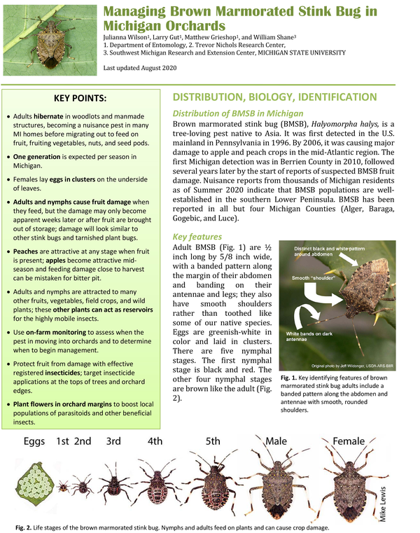 Cover of factsheet