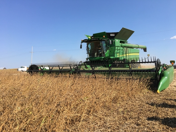 Nutrient removal rates by grain crops - MSU Extension