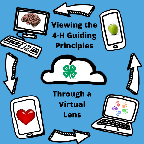 A graphic indicating the process of virtual lenses.