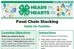 Food Chain Stacking cover page.