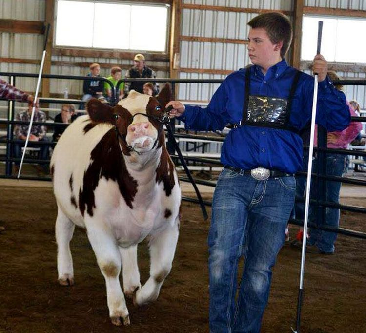 Allegan County 4-H is growing a true 4-H teen animal science leader in Miles Wixom. All photos: Robyn Wixom.