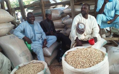 Photo of men selling legumes at Market in Kano, Nigeria.