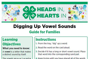 Digging Up Vowel Sounds cover page.