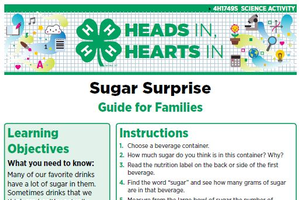 Sugar Surprise cover page.