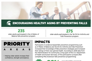 Encouraging Healthy Aging by Preventing Falls