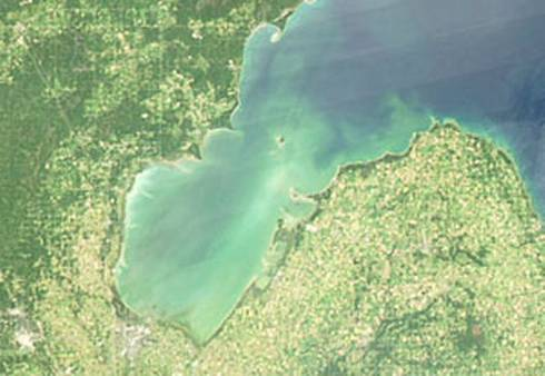 MSU researchers earned a grant from the Environmental Protection Agency to identify, manage and eliminate harmful algae blooms