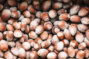 Opportunities in forestry: Hazelnuts