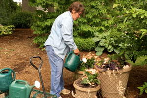 Lakeshore Extension Master Gardener Program scheduled for March