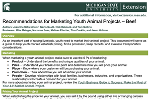 Recommendations for Marketing Youth Animal Projects – Beef