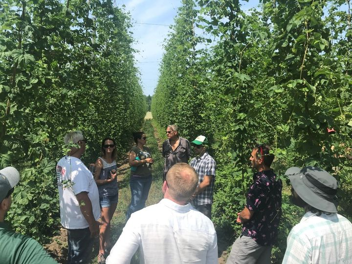 Members of the Great Lakes Hop Working Group touring a Michigan hopyard