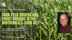 MSU Extension Field Crops Webinar Series addresses profitable corn production on Feb. 15