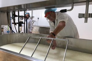 Learning the art and science of cheesemaking
