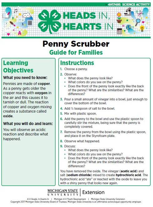 Penny Scrubber cover page.