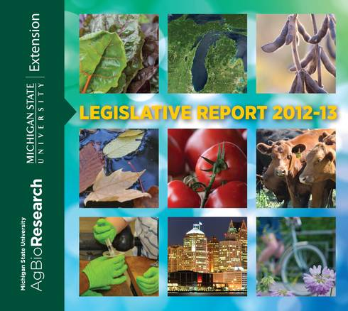 2012-2013 Legislative Report Cover
