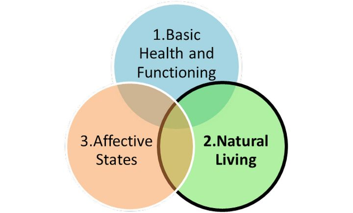 Three Circles Model of Animal Welfare, adapted from Appleby, Lund, and Fraser and colleagues.| MSU Extension