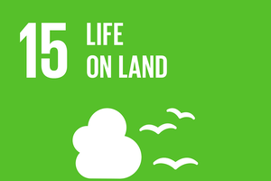 Help protect life on land through active global citizenship — Part 1