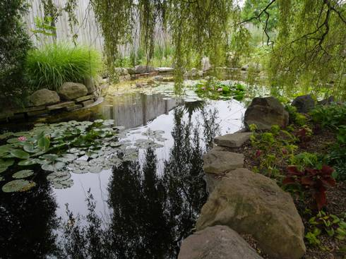build water gardens away from other waterbodies to prevent escape of non native animals and - Water Garden Plants
