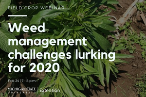 Field Crops Webinar Series: Weed management challenges that lurk for 2020