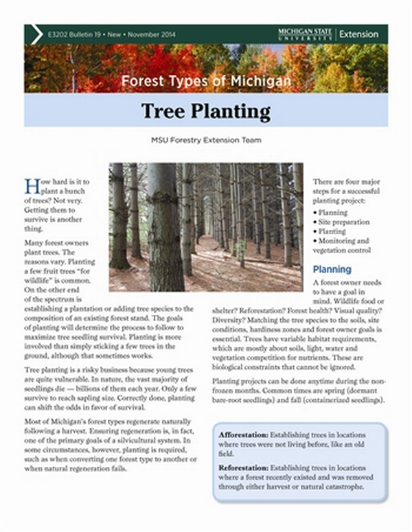 Forest Types of Michigan: Tree Planting (E3202-19) - MSU