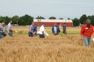 Barley field day series scheduled in two Michigan regions this June