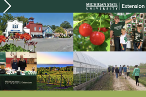 Leelanau County Annual Report: 2019-2020