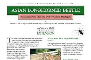 Asian Longhorned Beetle: An Exotic Pest That We Don't Want in Michigan (E2693)