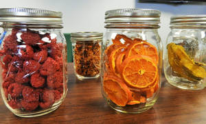 Science behind food preservation methods