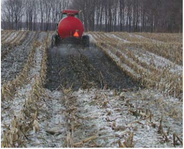 Winter manure applications in Michigan can be very beneficial for farmers and the environment if managed to reduce risk of runoff | Photo by Michigan State University Extension