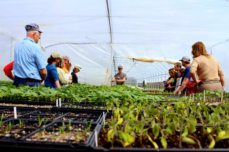 Participants learn about greenhouse management at the MSU North Farm. | Photo by Collin Thompson, Michigan State University Extension