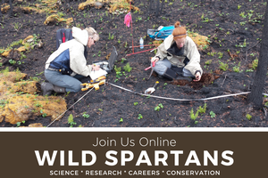 Wild Spartans Series - Researching Wildfire
