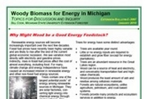 Woody Biomass for Energy in Michigan: Why Might Wood be a Good Energy Feedstock? (E3087)